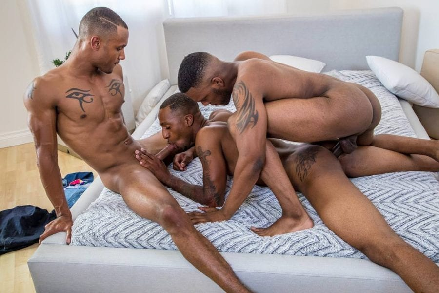 Don't Knock It Til You Try It: Aaron Reese, Jigz Castelo & Titus McMasters (Bareback)