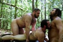 Fucking Muscle Bears: Vinnie, Steve & Steve Roman
